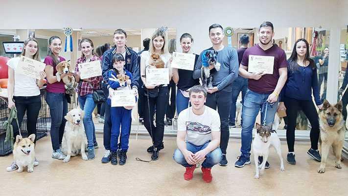 Группа дрессировки собак Андрея Хапинина
