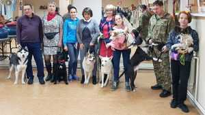 Группа дрессировки собак Софьи Сергеевой
