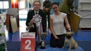 Второе место на Всероссийской выставке собак