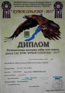 Диплом за кубок Ольхона
