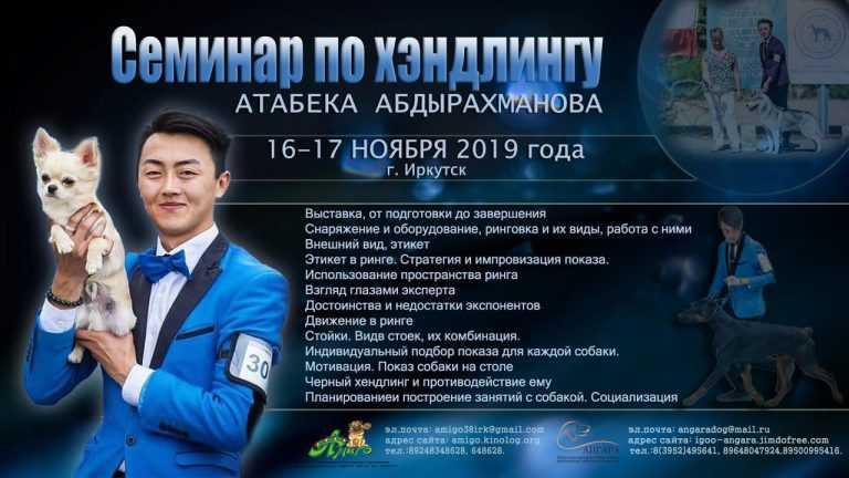 Баннер Атабека Абдырахманова
