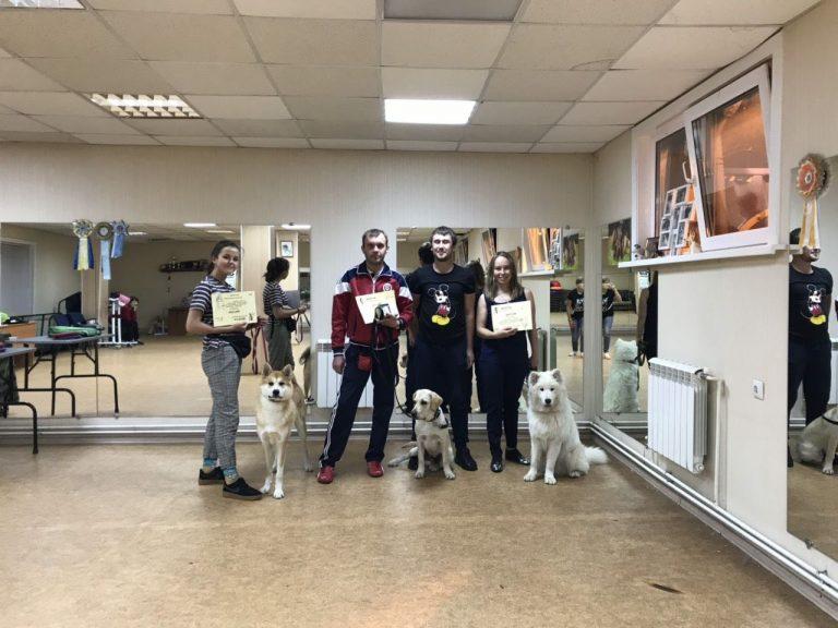 Выпуск группы по дрессировке собак в Иркутске за Сентябрь 2019