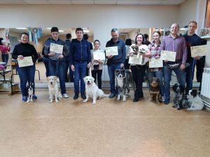 Выпускники курсов по дрессировке собак в Иркутске за январь 2019 года